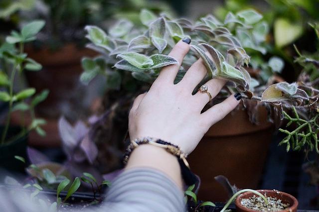 Žena sa rukou dotýka kvetiny, na ruke má náramok a prsteň.jpg